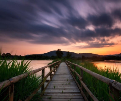 Canva---Timelapse-Photography-of-Wooden-Bridge-Near-Body-of-Water