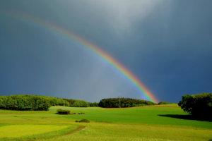 Canva---Rainbow-in-Nature